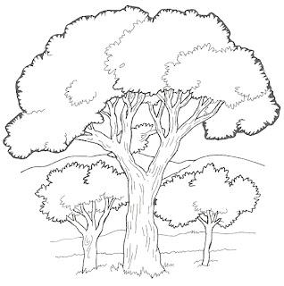 dibujos de arboles