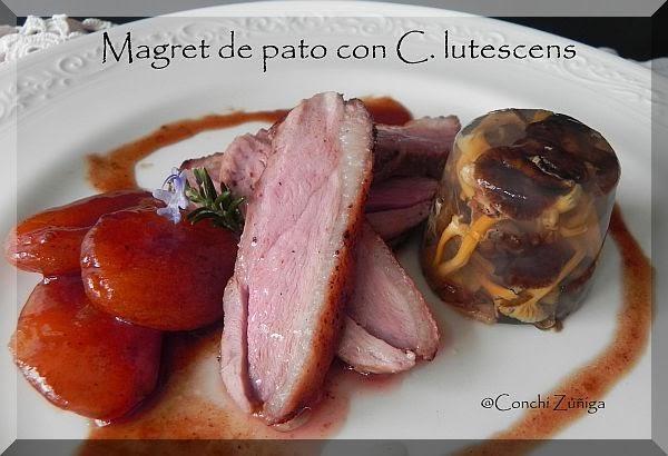 http://cocinandosetas.blogspot.com.es/2012/12/magret-de-pato-con-c-lutescens.html