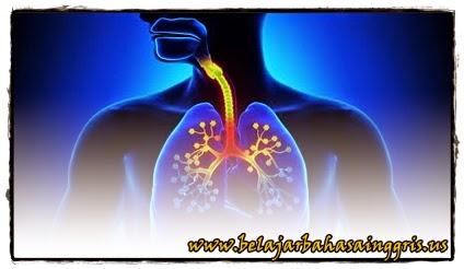 Sistem Pernapasan Manusia | www.zonasiswa.com