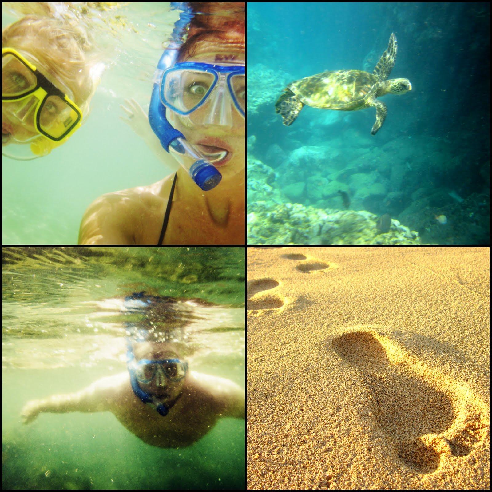 http://2.bp.blogspot.com/-aeFsissFafw/ThDObrtpc2I/AAAAAAAAA1M/0YciSo8XdUs/s1600/Hawaii5.jpg