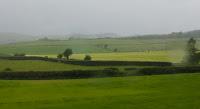 Поля Шотландии под дождем, Scotland