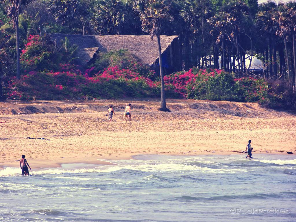 Bodhi Beach Pondicherry Pick Pack Go