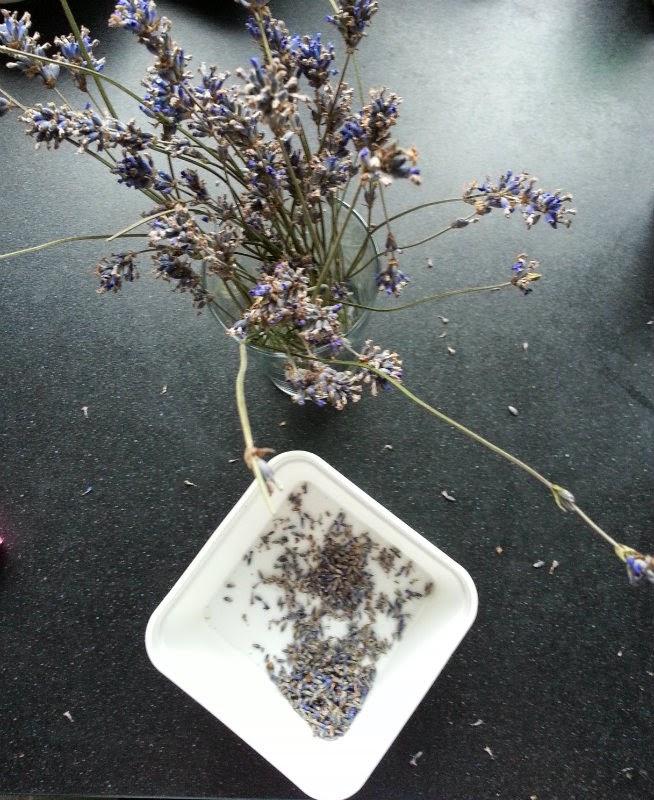 Lavendel uit de tuin