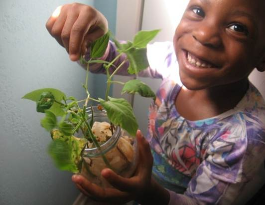 Roomations healthy rooms for children child playing with plant workwithnaturefo
