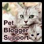 Click on the kitties to learn more...