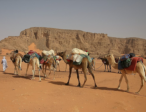 how do people live in deserts How do rivers and deserts affect the way of life in the middle east  living in the desert (2) people live near springs in the desert (oasis)-edflowersnet.