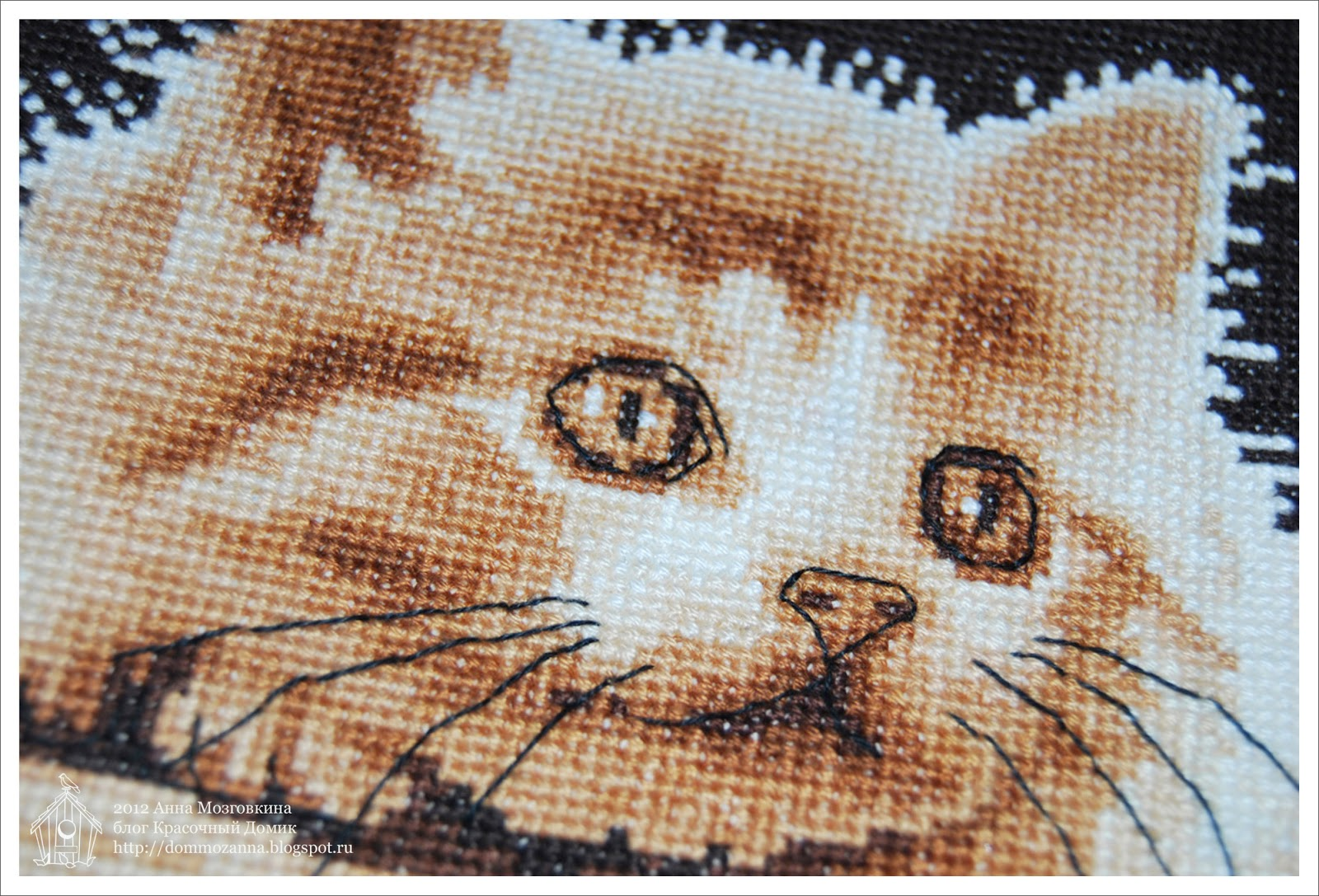 DMC Big Eyes Kitty вышивка