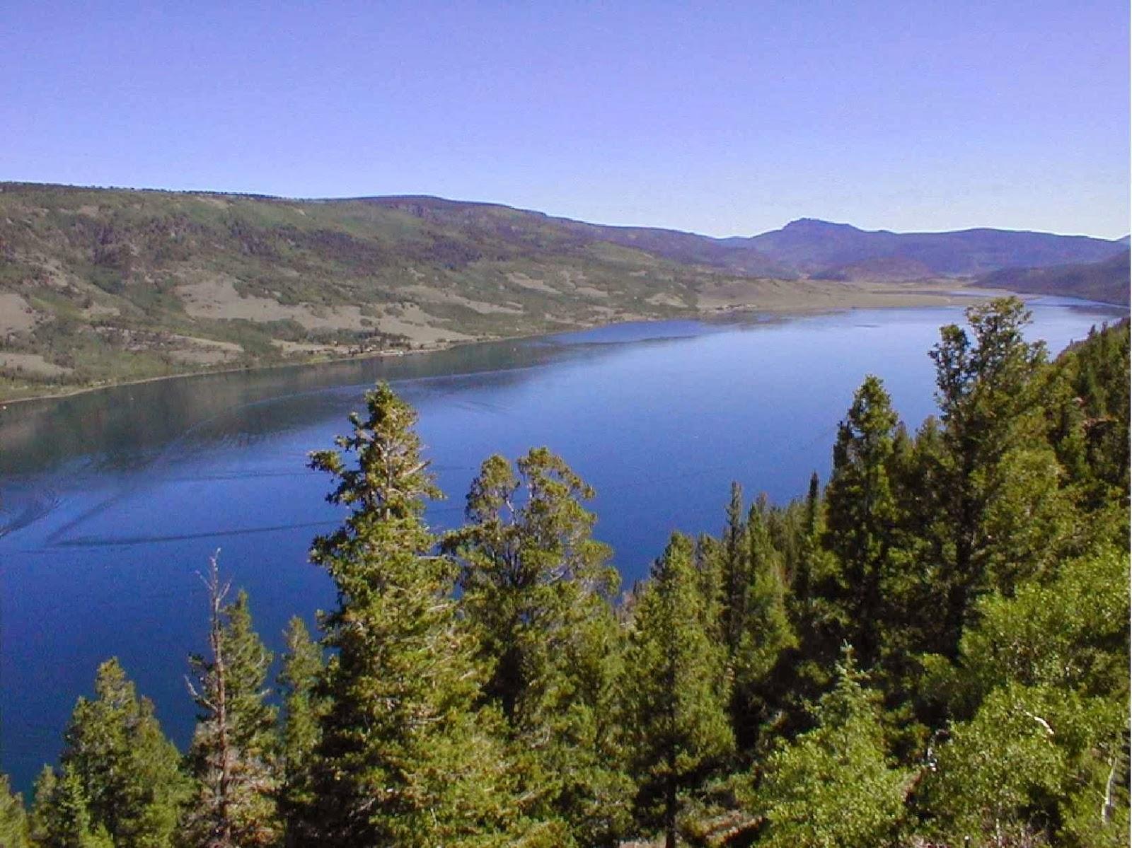 Southern utah hunt and fish bowery haven resort fish for Fish lake utah