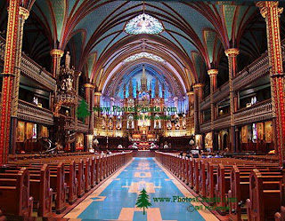 Basilica Notre Dame,notre dame