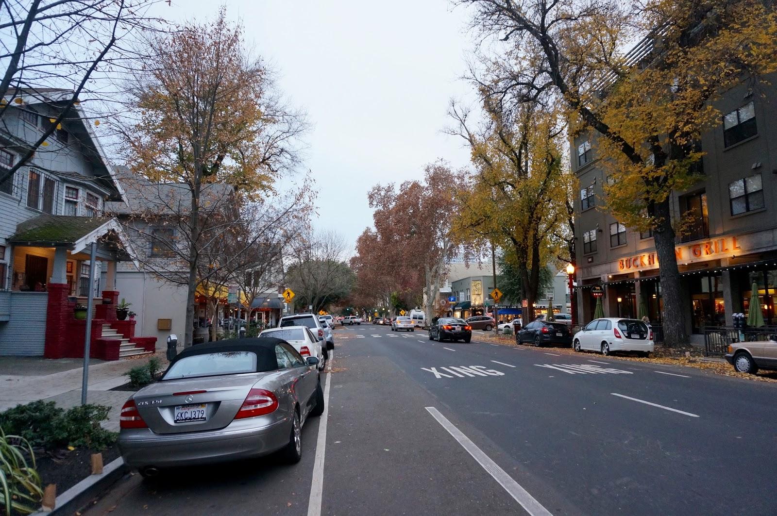 Day Trip to Sacramento - greysuede.com