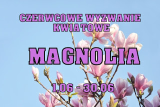 wyzwanie kwiatowe- magnolia
