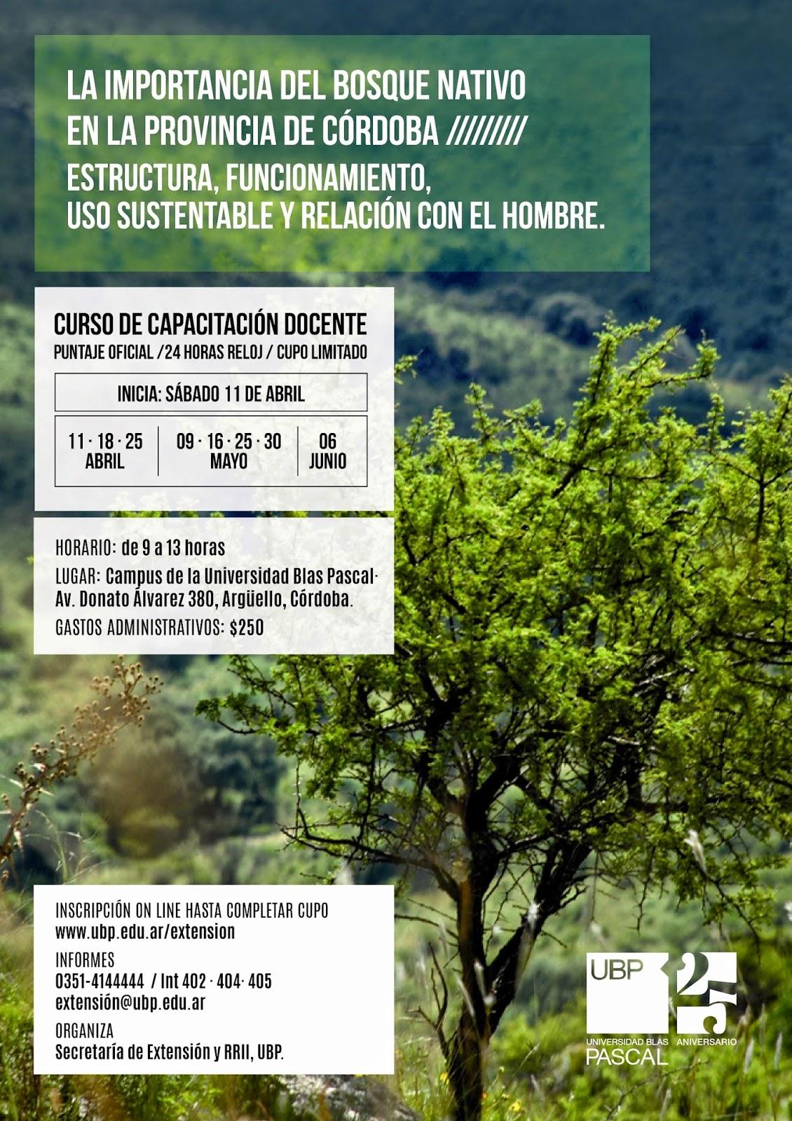 Programa sustentabilidad ambiental marzo 2015 for Dia del arbol 01 de septiembre
