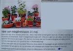 Växt och Trädgårdsloppis i SKIVARP