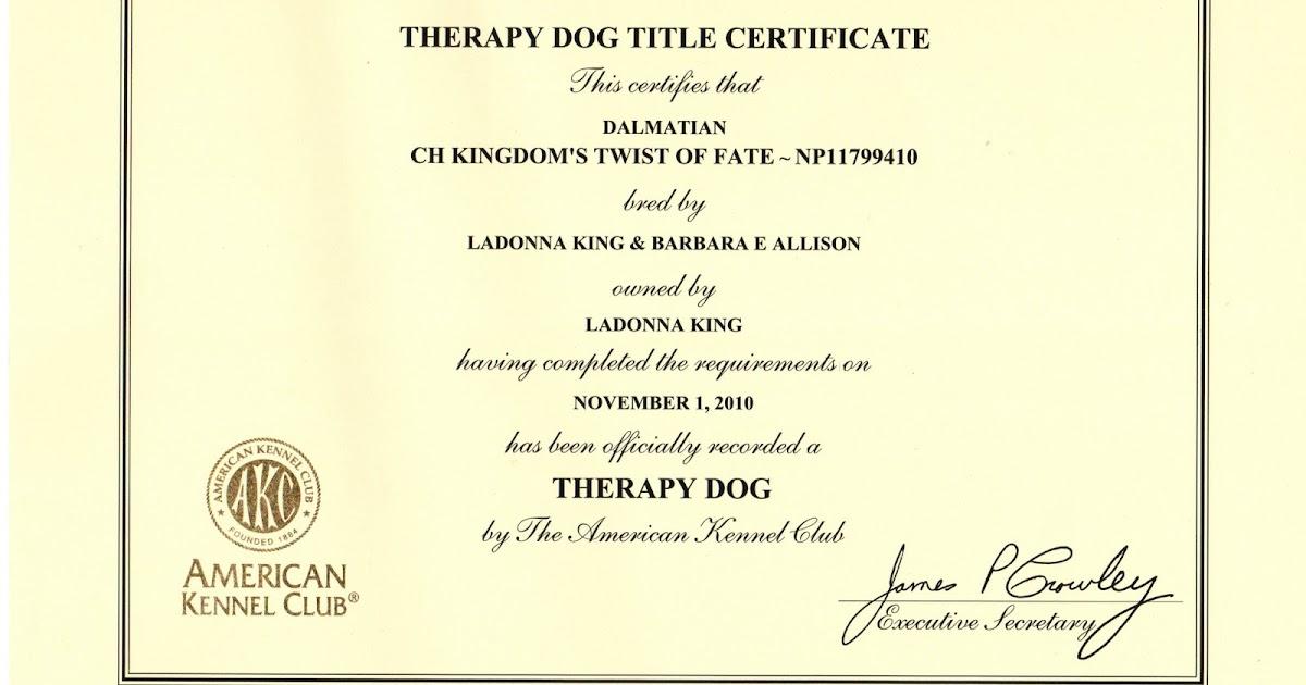 Brags: AKC Therapy Dog
