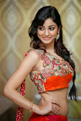 Shilpi Sharma Photos at Trisha Pre launch fashion Show-thumbnail-2