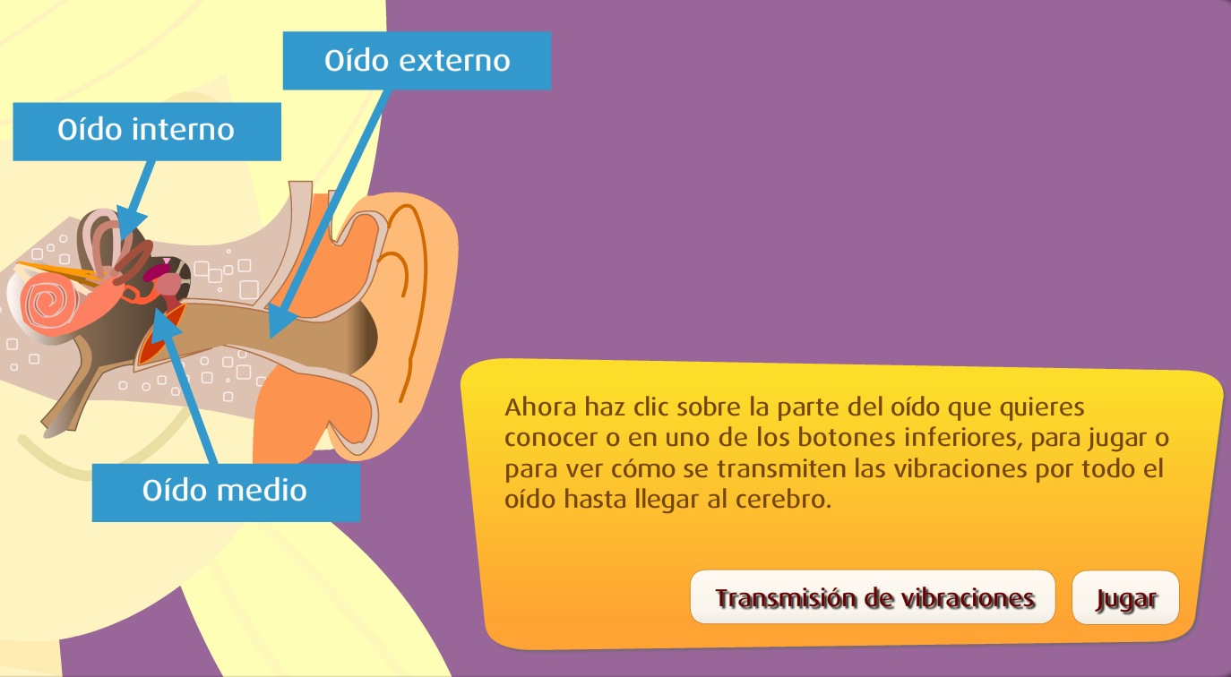 http://www.primerodecarlos.com/TERCERO_PRIMARIA/octubre/Unidad2/actividades/cono/sentido_oido/frame_prim.swf