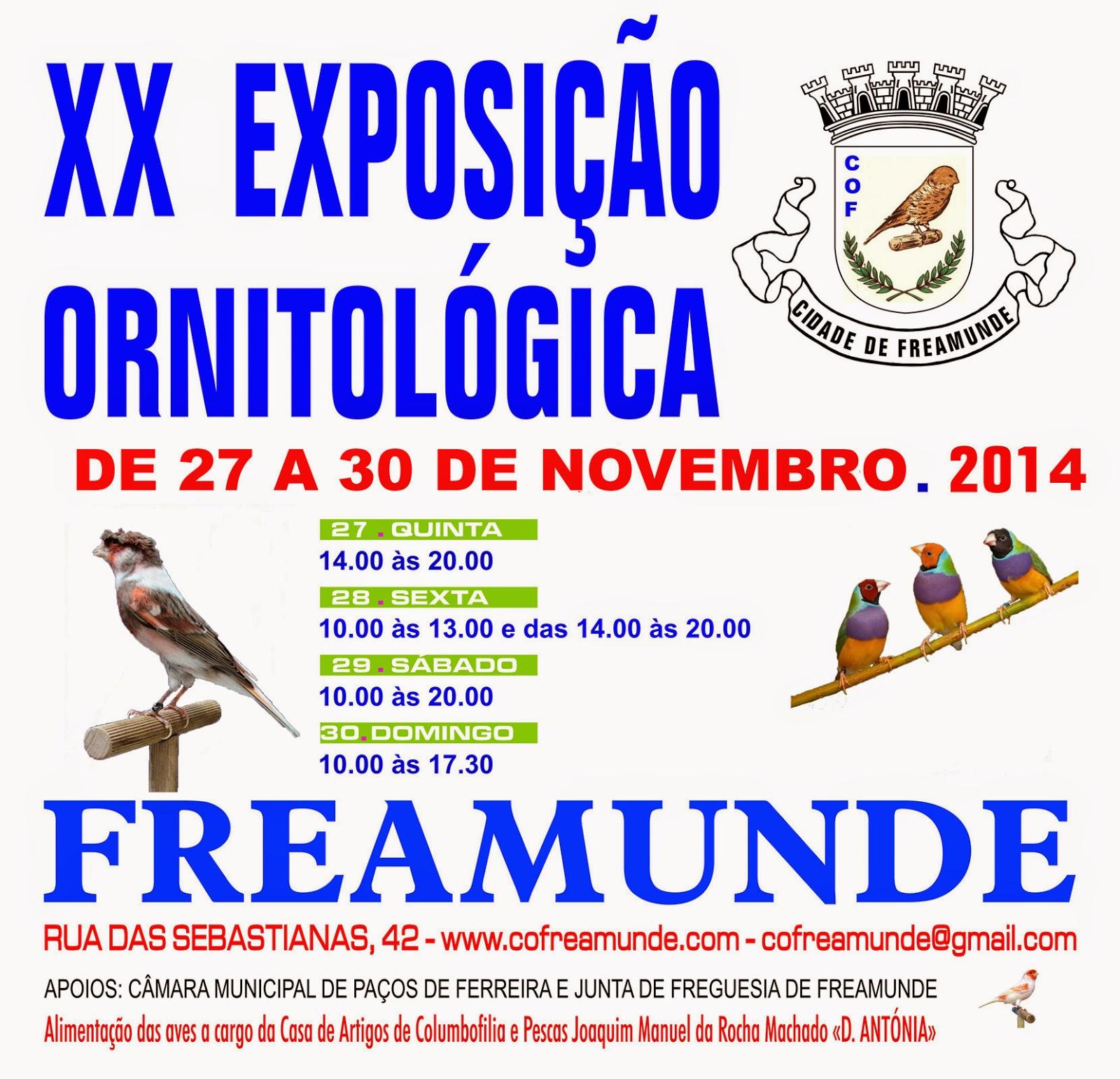 www.freamunde.com