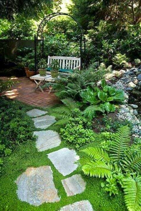 Lady anne 39 s cottage a charming shade garden for Rock garden designs shade