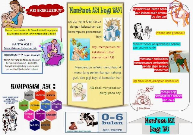 Kumpulan Materi Kebidanan Leaflet Asi Eksklusif