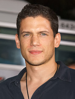 Wentworth-Miller-gay-homosexual-intento-suicidio