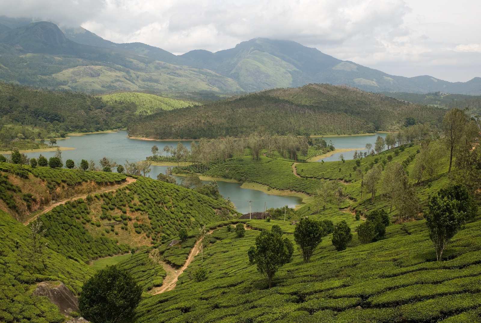 Yelagiri India  city images : Yelagiri Hill Station of Tamil Nadu | India Tourism