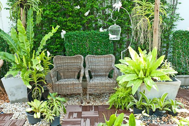Small Garden Design February 2013