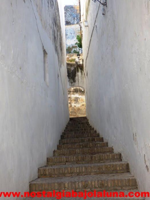LA BELLEZA NATURAL DE ARCOS DE LA FRONTERA