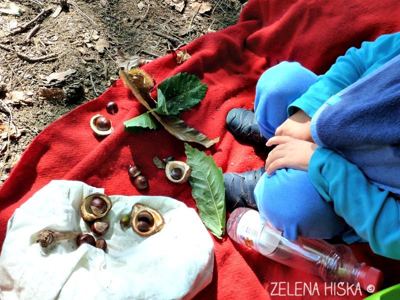gremo ven - ideje za preživljanje prostega časa z otroki v naravi - nabiranje zakladov