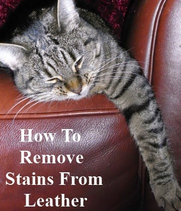 Removing Stains From Leather