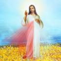 jesus misericordia en un campo