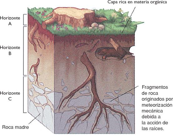 la geografia caracter sticas generales del suelo