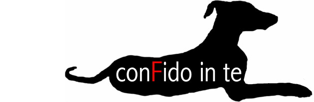 conFido in te