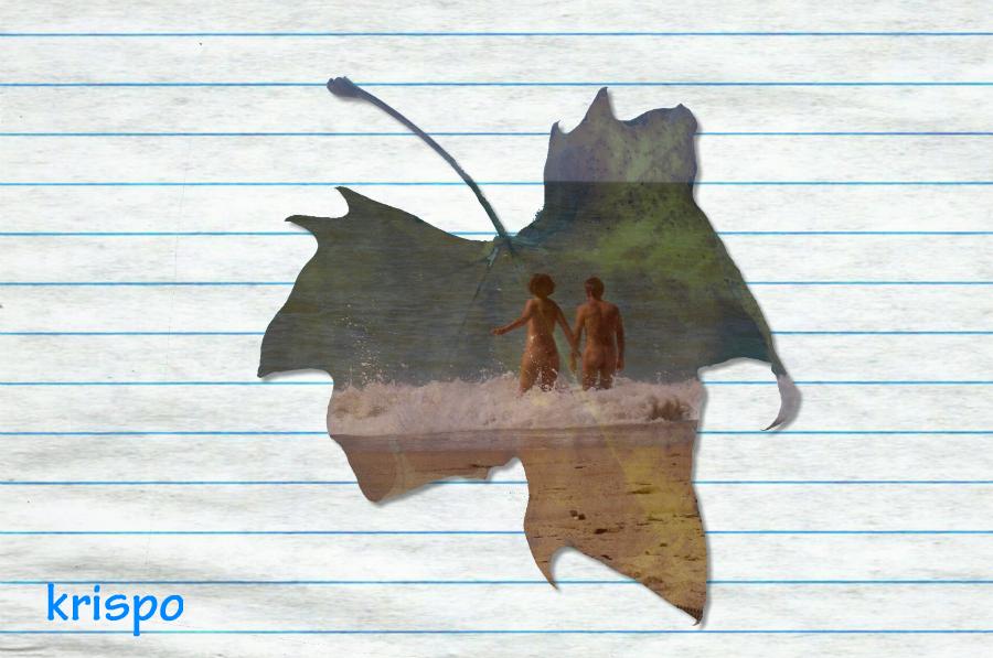 hoja de árbol hecha con fotografía de pareja desnuda en la playa