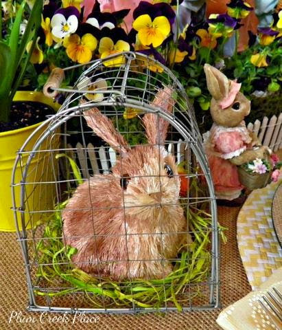 sisal bunny