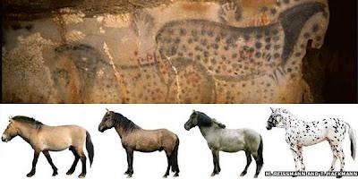 Pernah Lihat Kuda Kuno dari Zaman Batu?