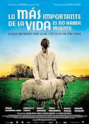 Lo más importante de la vida es no haber muerto (2010)