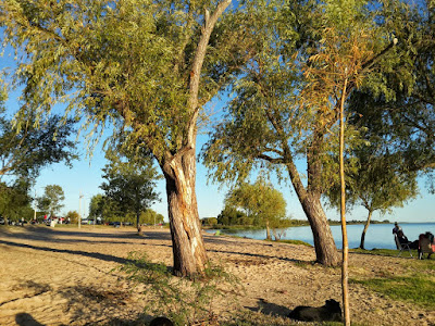 Playa Seré, Playas de Carmelo, Departamento de Colonia, Ciudades de Uruguay,