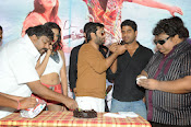 Hero Tarun Birthday Celebrations at Yuddham movie sets-thumbnail-7