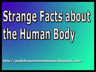 Strange Facts about the Human Body