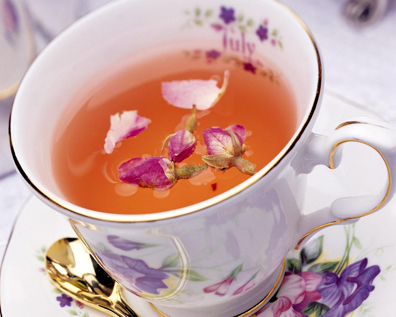 Как заваривать иван чай полезные свойства и противопоказания
