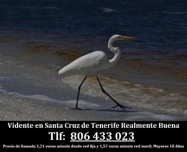 Vidente en Santa Cruz de Tenerife Realmente Buena
