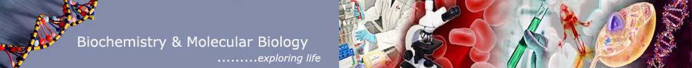 Biochem Blog and Info
