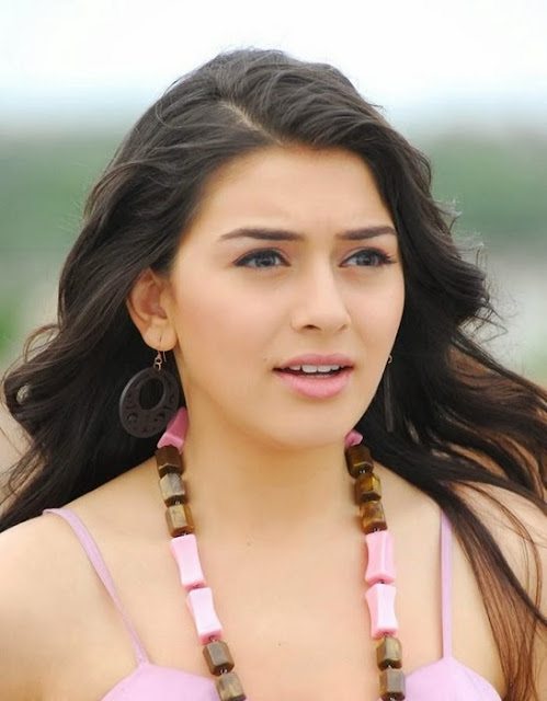 Hansika Motwani in Pink Dress