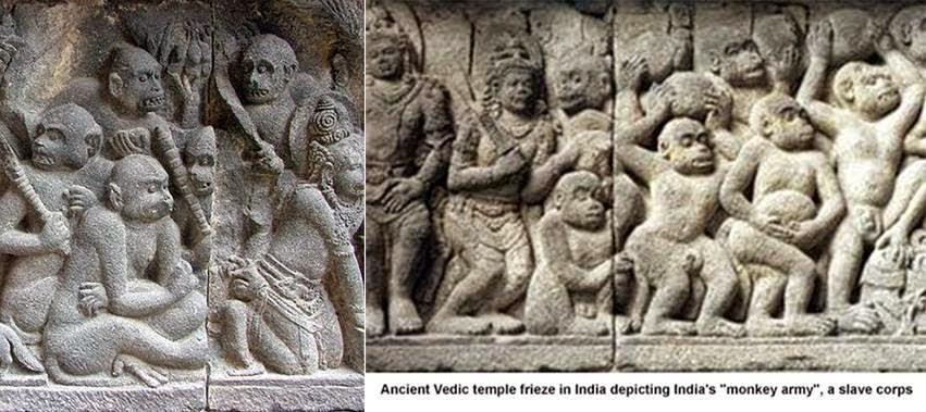 monkeyslave - Sangre del Mono: La Raza de Esclavos de los Dioses
