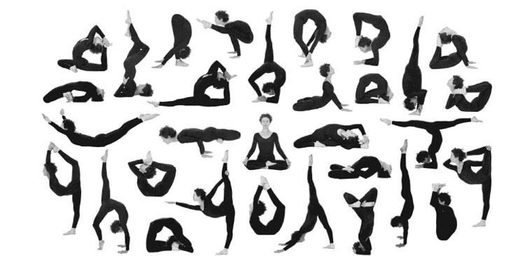 Yoga Exercise   Yoga Poses   Yoga Mudras