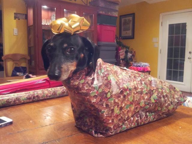 Упаковал подарок. Подарок съест твои тапки. Позже.