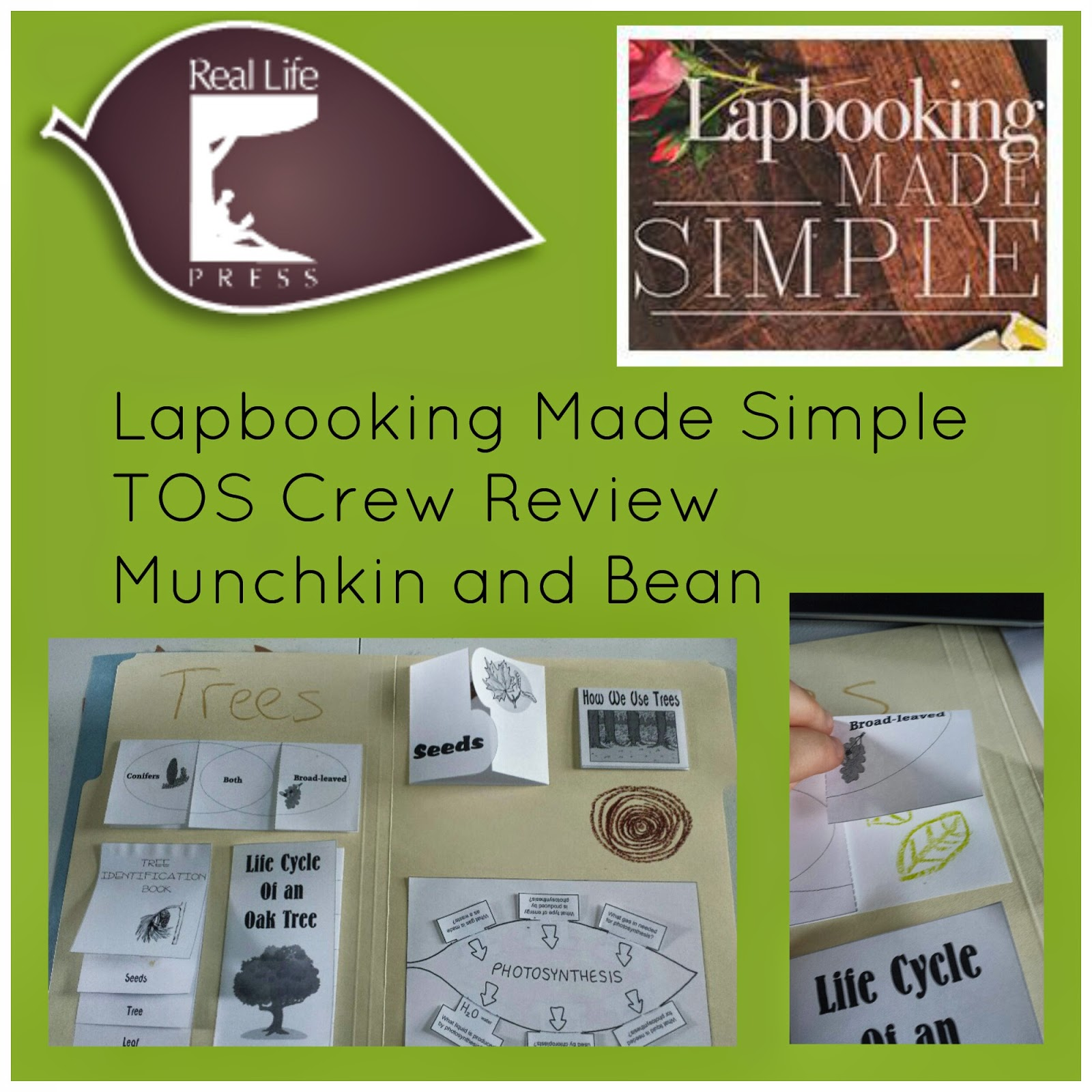 Munchkin and Bean: Lapbooking Made Simple Review