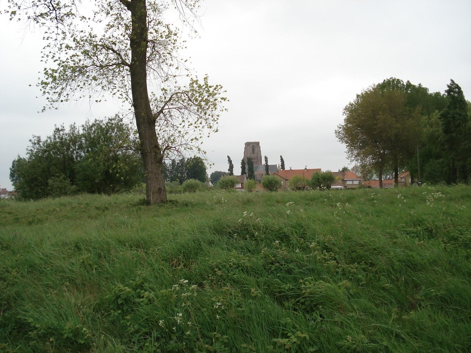 kerktoren van het polderdorpje Lissewege