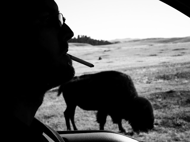A really great fake cigarette and a buffalo near the Badlands in South Dakota.