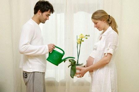 thuc pham bo sung cho phu nu mang thai